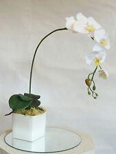 ORCHIDEA Phalenopsis Piante artificiali  Vaso orchidea phaleno  fiori finti