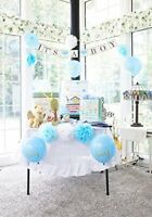 Baby Shower Decorations for Boy: Party Set with Banner, Sash, Blue Balloons, Pom
