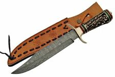 """NEW 13 7/8"""" Damascus Steel Blade, Stag Horn Handle Bowie Knife w/ Sheath"""