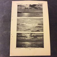 Antique Book Print - Sydney Seascapes - 1907