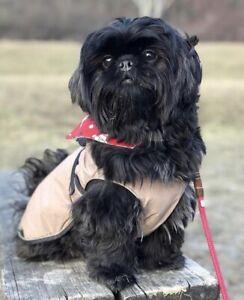 Genuine Hunter Uppsala Waterproof Puppy/small Dog Coat With Removable Fleece 25