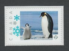 PENGUIN FAMILY flightless SEABIRD Picture Postage Canada 2014 p76bd5/2