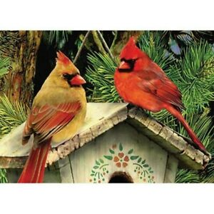 Diamond Painting Kit for Adults Full Drill Bird on the Roof Embroidery