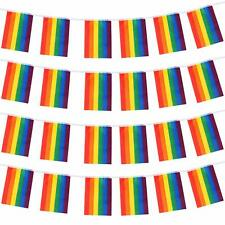 """12"""" 8pc Rainbow Pride Bunting Flags Gay Lesbian LGBT Party Parade Festival"""