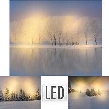 LED Wandbild beleuchtetes Bild Leuchtbild Leinwandbild Leinwandfoto KM 303729