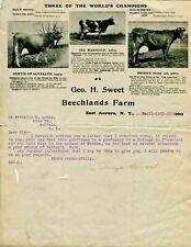Geo H Sweet Beechlands Farm Letterhead 1904 Aurora New York Champion Jersey Cows
