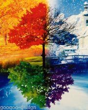 Kit punto croce tutte le stagioni lana 60x50 cm Immagine Four Seasons #80286