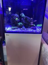 saltwater aquarium tank
