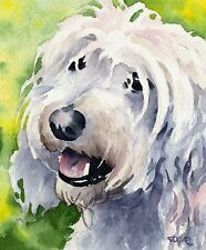 New ListingCockapoo Dog Watercolor 8 x 10 Art Print Signed by Artist Djr