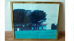 Cuadro fotografia enmarcada PAISAJE , decoracion rustica y campestre.
