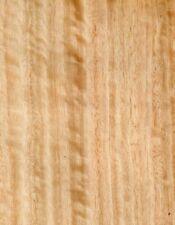 8 x Furnier Eukalyptus 300cm x 21cm Möbel Edelholz
