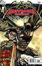 Bruce Wayne: The Road Home: Batman & Robin #1
