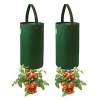 Pri Gardens Upside Down Tomato Planter, (2- pack) Hooks Included