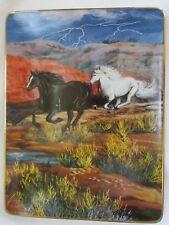"Franklin Mint Thunder In The Canyon Coll. ""Thunder & Lightning"" Porcelain Plate"