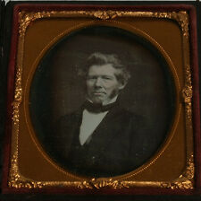DAGUERREOTYPE TINTED PORTRAIT MAN WILD HAIR. 1/6  PLATE FULL CASE OVAL MAT.