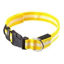 Colliers lumineux jaunes pour chien