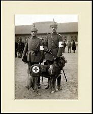 LEONBERGER RED CROSS WAR RESCUE DOG MEDICAL CORPS SOLDIERS PRINT READY TO FRAME