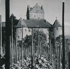 MEERSBURG c. 1960 - Le Château Bade-wurtemberg Allemagne - Div 5583
