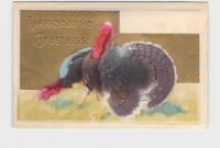 ANTIQUE POSTCARD THANKSGIVING TURKEY GREETINGS HAND-COLORED EMBOSSED