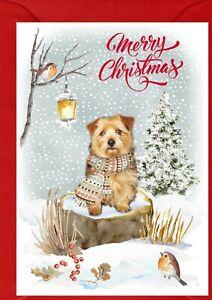 "Norfolk Terrier Dog A6 (4""x 6"") Christmas Card (Blank inside) by Starprint"
