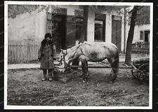 Cieszanów-Lubaczów-Karpatenvorland-1940-Polen-Bevölkerung-zahlmeisterei-115