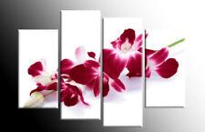 Realism Floral Red Art Prints