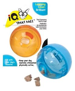 OurPet's Smarter Interactive IQ Treat Ball Dog Toy Free Shipping