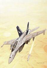 Postcard Aircraft USMC F1A-18 Hornet - modern card / large