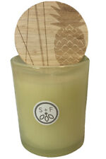 Sand + Fog Pineapple Coconut 4 oz Essential Oils Scented Single Wick Candle