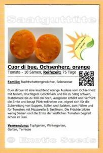 🍅 Tomate 'Cuor di bue, Ochsenherz, orange' , 10 Samen
