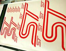 Ford Focus Fiesta ST Logo 17 Piece Vinyl Sticker Kit Motorsport Graphics Decals