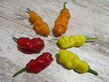 ''Lustiger Penis-Chili Mix'' 3 Farbig -3 Sorten- 30 Samen Peter Pepper Chili