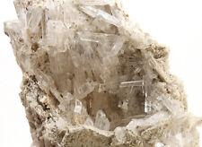 5538 Nifontovit nifontivite auf Matrix UV Charcas Mexiko specimen mineraux