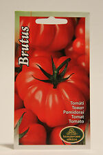 Heirloom Red Giant Tomato - Brutus Solanum lycopersicum L. seeds, Семена Томата