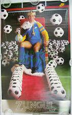 NITF! ☆ Vintage ☆ Original ☆ NIKE Soccer Poster ☆ Steve Zungul Lord of Indoors