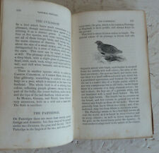 Vintage Book 1831 Buffon's Natural History John Wright Vol III Birds Fishes
