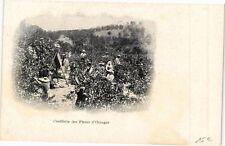 CPA Cueillette des Fleurs d'Oranger (261828)