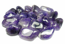 TUMBLED - (4) Small AMETHYST Crystals w/Description - Healing Stone Reiki