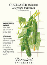 English Telegraph Improved Cucumber - 20 Seeds - Botanical Interests
