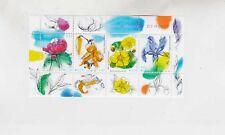 estonia 2007 flower,sheet MNH        k1557