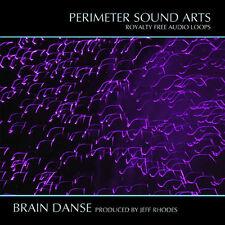 Brain Danse Acid REX Apple Loops - The Legendary Ensoniq FIZMO Resynthesized -