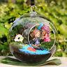 Hanging Clear Round Ball Glass Flower Vase Planter Terrarium Container Decor US