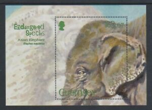 Guernsey - 2010, Asian Elephant sheet - MNH - SG MS1320