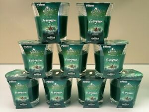 9 Glade Icy EVERGREEN FOREST Limited WINTER Spruce Pine Scented Oil Candles