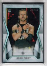 2020 Topps WWE Transcendent Collection ADAM COLE Silver Framed 49/50 Wrestling 1