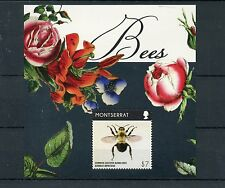 Montserrat 2015 MNH Bees 1v S/S Insects Common Eastern Bumblebee