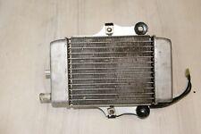 Dylan SES125 /150 JF10/KF05  Ez.2003     Wasserkühler Kühler Wasser komplett