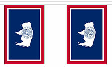 WYOMING U.S. STATE BUNTING 9 metres 30 flags Polyester flag