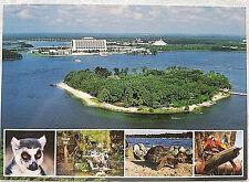 RARE 1990's WALT DISNEY WORLD DISCOVERY ISLAND ZOOLOGICAL PARK POSTCARD
