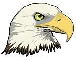 Eagles DVDs